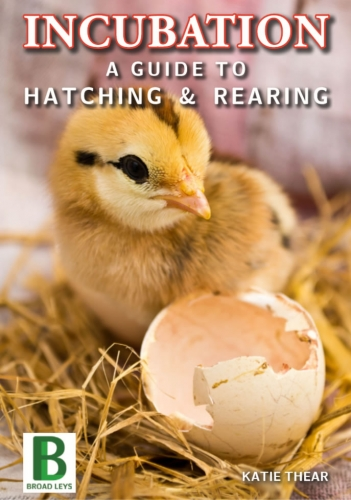 Incubation  A Guide to Hatching & Rearing